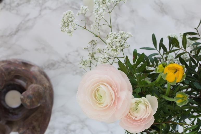 Blumen – Blumen und Farbe
